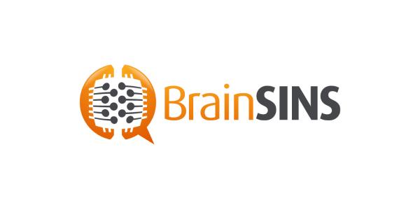 Brain SINS