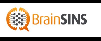 brainsin logo