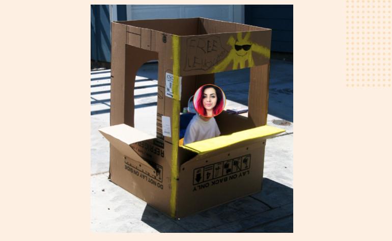 SEO Shop Up - SEO Kristina in box
